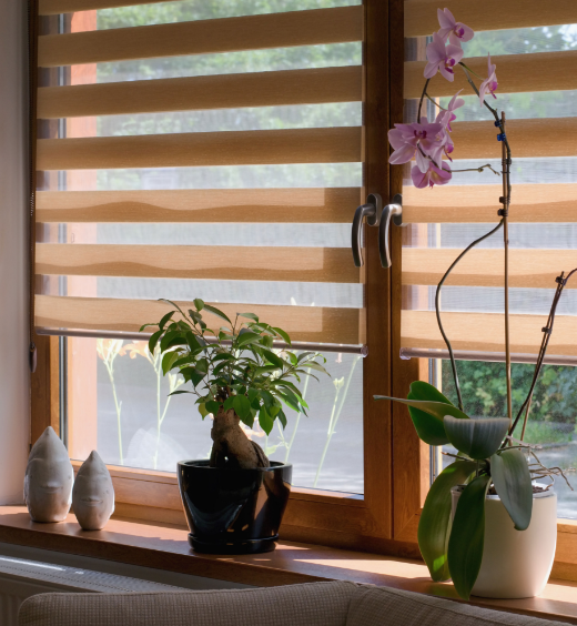 Lutron Automated Shades Image